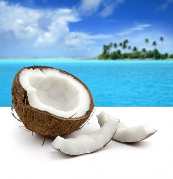 tropics-coconut-preview.jpg